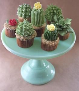cupcakes suculentas