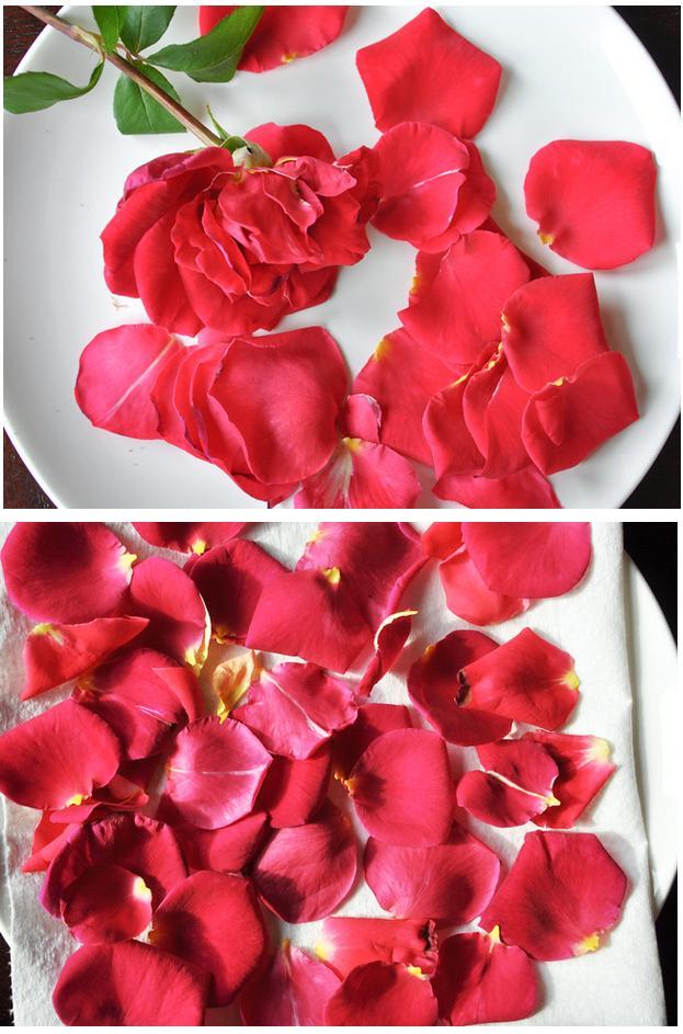 secar-petalos-1-http-www-manualidadesplus-com
