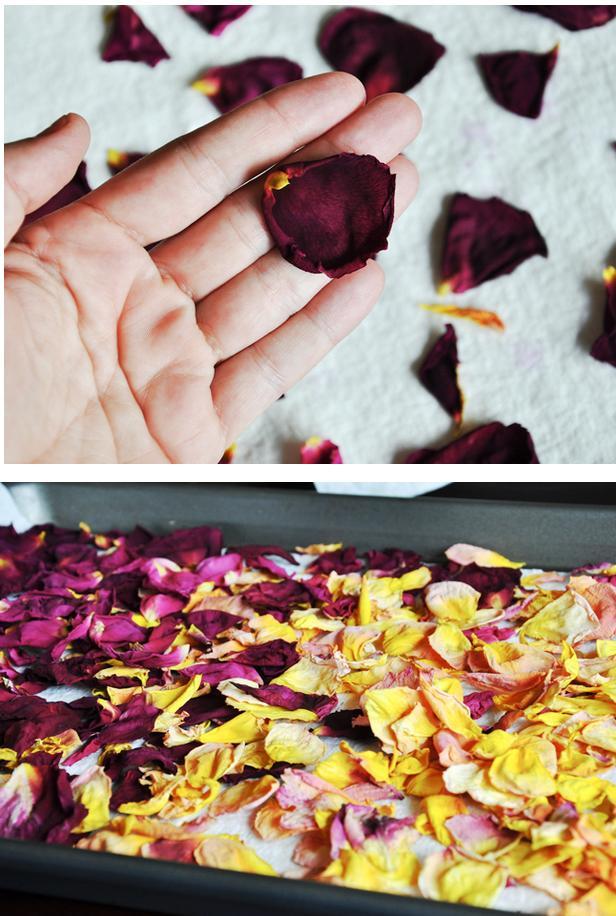 secar-petalos-2-http-www-manualidadesplus-com