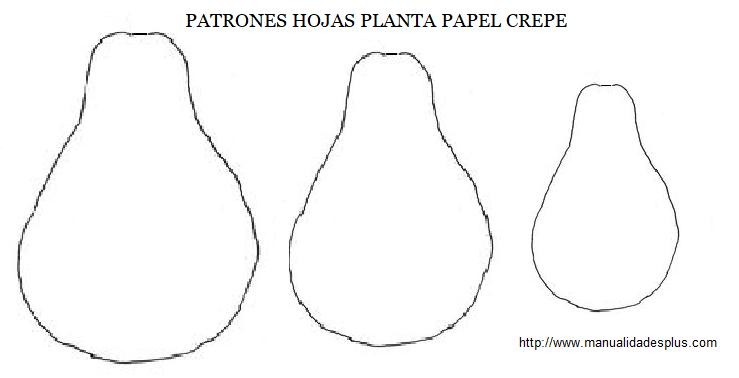 planta papel crepe