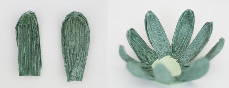 papel crepe suculentas plantas 3