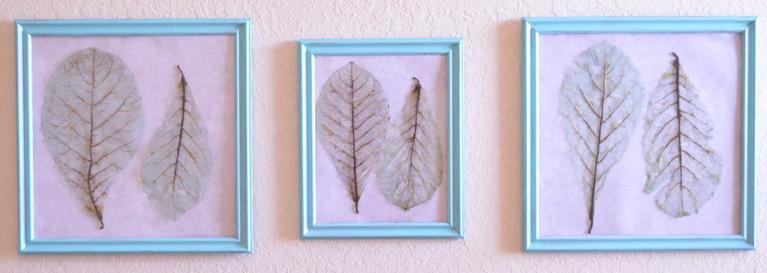 hojas esqueletizadas colores diy 2