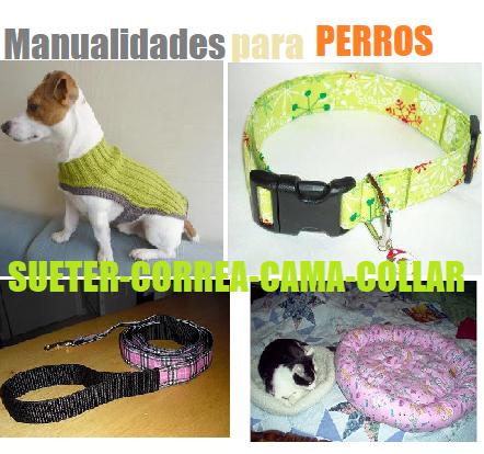 perros ropa