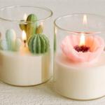 velas-suculentas